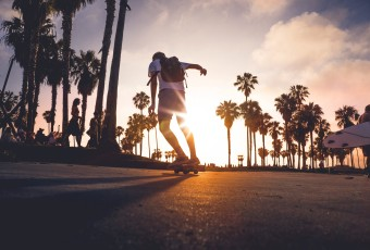 Palm Tree Sunset Skateboarder free stock photo